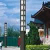 宁夏景观灯厂家 想买实用的张掖太阳能路灯就来甘肃朗坤照明