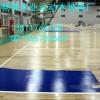 南京厂家专供夏季促销体育木地板