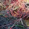 麻涌电线铜回收——专业的【电线铜回收】哪里有