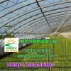 供应温室建设 全钢架花梁温室大棚 寿光市启航温室