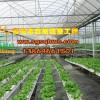 供应智能温室 阳光板智能温室 寿光市启航温室