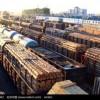 专业做天津进口红木的货代公司