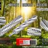 森科双面刨螺旋刀轴面光如镜:质量好的舍弃式螺旋刨刀轴供应信息