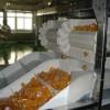 食品输送带直销