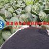 富硒添加飼料中會有什麼優點/富硒礦/硒礦石產地直銷價格優