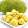 个人如何进口泰国的水果