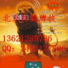 曲阳县牌具公司店铺136乄2128 乄9786普通扑克分析仪专卖