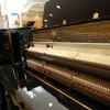 上海租琴,罗兰电钢琴租赁多少钱
