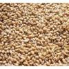 求购大米、小麦、玉米等原料