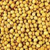 汉江合作长期求购黄豆黑豆青豆绿豆等原料