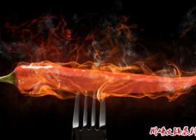 2017年中国国际火锅食品及调料展览会