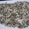 贝壳粉用途及进口报关指南