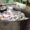 求购南京机密文件免泄化浆,南京在线下单文件销毁