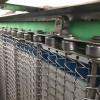 休闲食品烘干机输送线用链条式网带