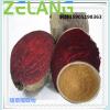 甜菜根提取物,ISO22000食品安全认证