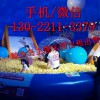 鲸鱼岛乐园详细清单 鲸鱼岛出租 蓝色鲸鱼岛海洋球