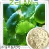 供应积雪草酸98%Asiatic acid