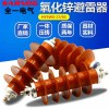 HY5WZ-1745电站型氧化锌避雷器YH5WZ复合金属高压避雷器10-12KV