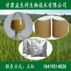 荷包草提取物 植物提取物 专业生产厂家 包邮
