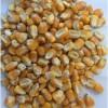 求购玉米高梁小麦大豆豆粕棉粕菜粕等饲料原料
