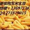 收购菜饼、养殖厂高价收购菜饼、玉米收购各类农产品