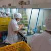 山西无菌培养洁净实验室----超净工作台