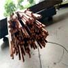 现货紫铜棒 T2纯紫铜棒 高纯度导电性能好 T2紫铜棒 导电紫铜