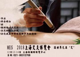 2018中医艾灸文化传承及艾灸理疗仪器加盟博览会