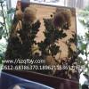 厂家销售 pc茶色耐力板 茶色磨砂pc板材 pc棱晶板