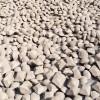 碳化硅粉粘结剂价格