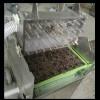 盆栽蔬菜播种机 点籽机 阳台种菜--常州苏久