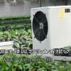 海南电暖风机-泮禄园艺设备提供有品质的电暖风机