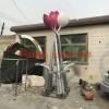 广场不锈钢花朵雕塑 不锈钢雕塑