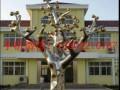 组图:山东不锈钢创意大树雕塑服务至上