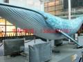 组图:江西玻璃钢大鲨鱼雕塑塑厂家制造