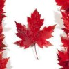 专业办理加拿大签证--首选美国国际交流集团