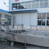 全自动蔬菜清洗机-气泡式蔬菜清洗机厂家