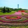 2019北京旅游景区景点及设施博览会,共同开创事业的艳阳天