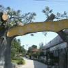 萊陽假樹大門 專業制作萊陽假樹大門