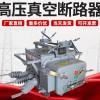 ZW20-12FG/630A戶外高壓真空斷路器智能遙控帶隔離10KV柱上開關