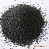 供应高产优质黑芝麻种子 厂家直销(芝麻种子)