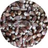 營養保健品種-紫麥1號黑小麥種子 產量高 營養好 修改
