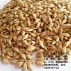 酒厂现款求购大麦200吨