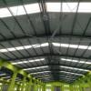 大型工业仓库吊扇通风降温效果如何呢,广州奇翔