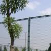 荆门五人制足球场围网安装现场