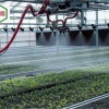 温室大棚育苗喷水专用无级调速遥控自走喷灌机厂家