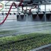 温室移动喷灌机农业灌溉设备定制厂家华耀报价