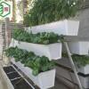 草莓立体种植槽厂家直销多种规格任您选择