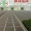 温室花卉种植无锡使用移动苗床苗床网的优势分析
