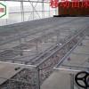 诸暨温室苗床A移动苗床网的应用安装华耀为您指导